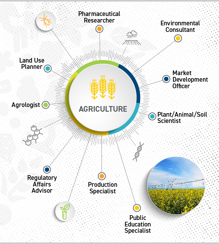 infographic3_agriculture-1.jpg