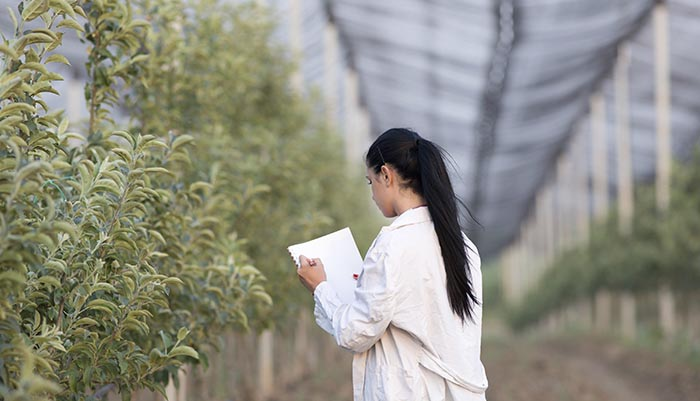 Agriculture Woman agronomist in the orchard
