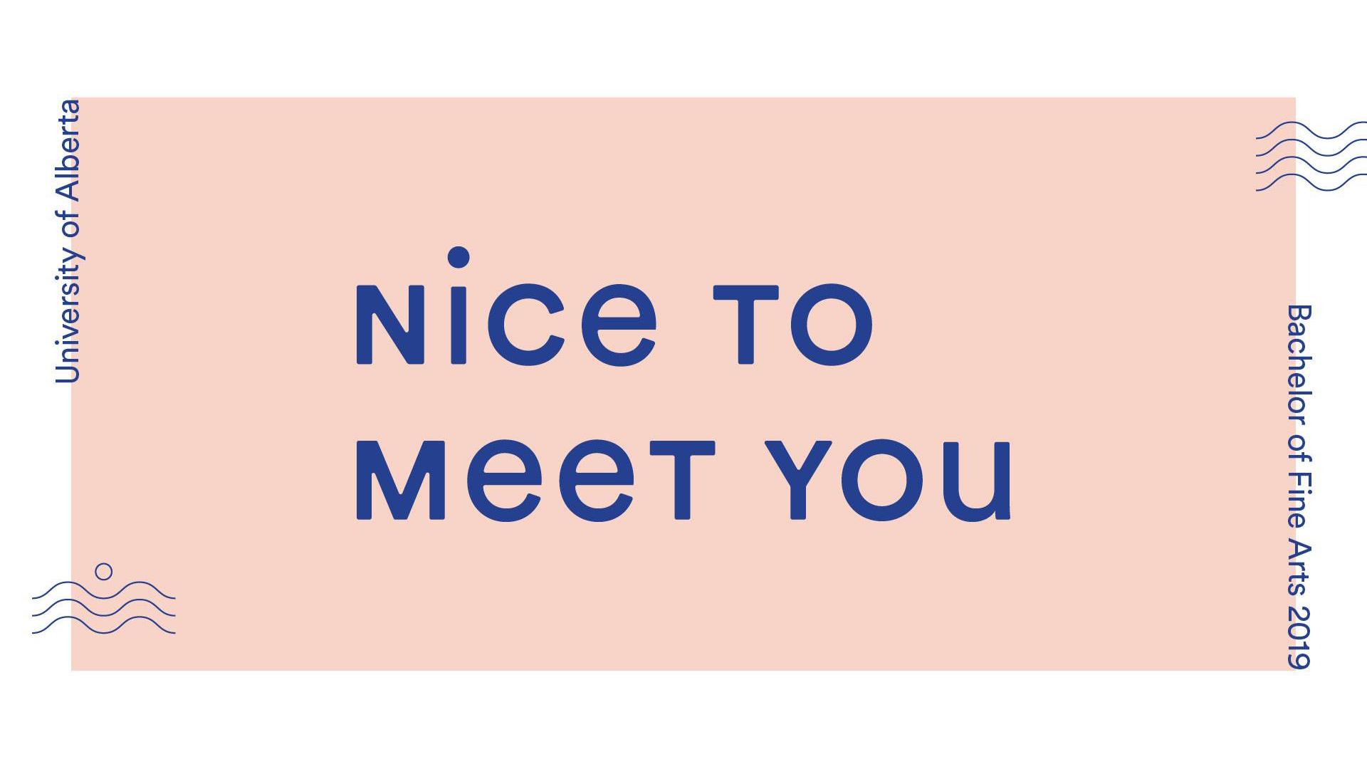 Nice to Meet You: Bachelor of Fine Arts Graduate Show 2019