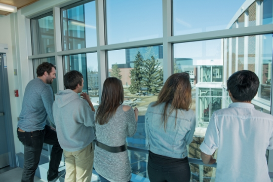 A group of Augustana students look out across campus