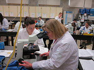 Professor Sheryl Gares looking into a microscope, leading a lab session