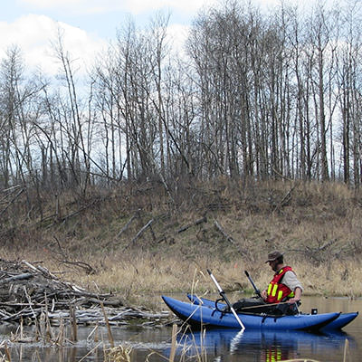 A photo of a research student rowing up to a beaver lodge