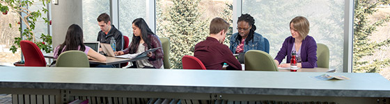A photo of a group of students studying in the library