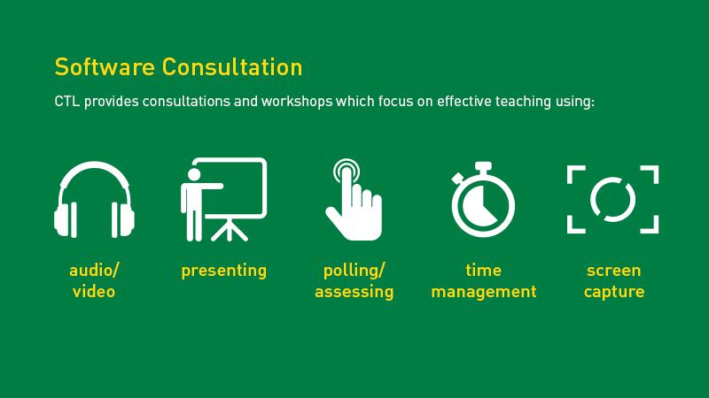 Software Consultation