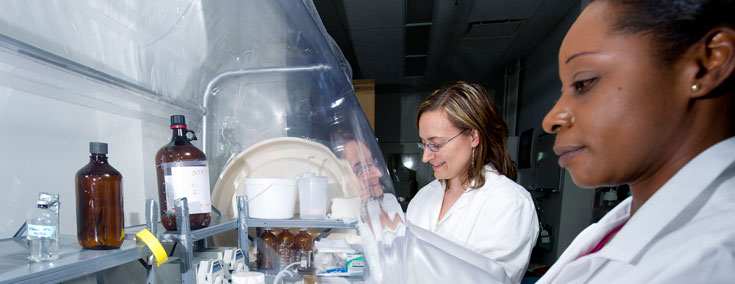 Female scientists working with chemicals under a fume hood.
