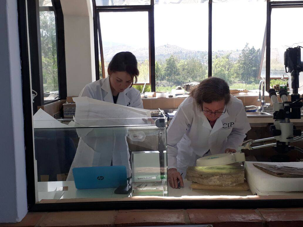 """Oksana Vernygora (left) working with her PhD supervisor Alison Murray on the 2018 study in which they identified a previously unknown species of ancient """"lizard fish."""" (Photo: Supplied)"""