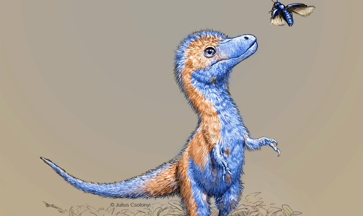 210125-baby-tyrannosaurus-juvie_01_v08_credit-julius-csotonyi-teaser.jpg