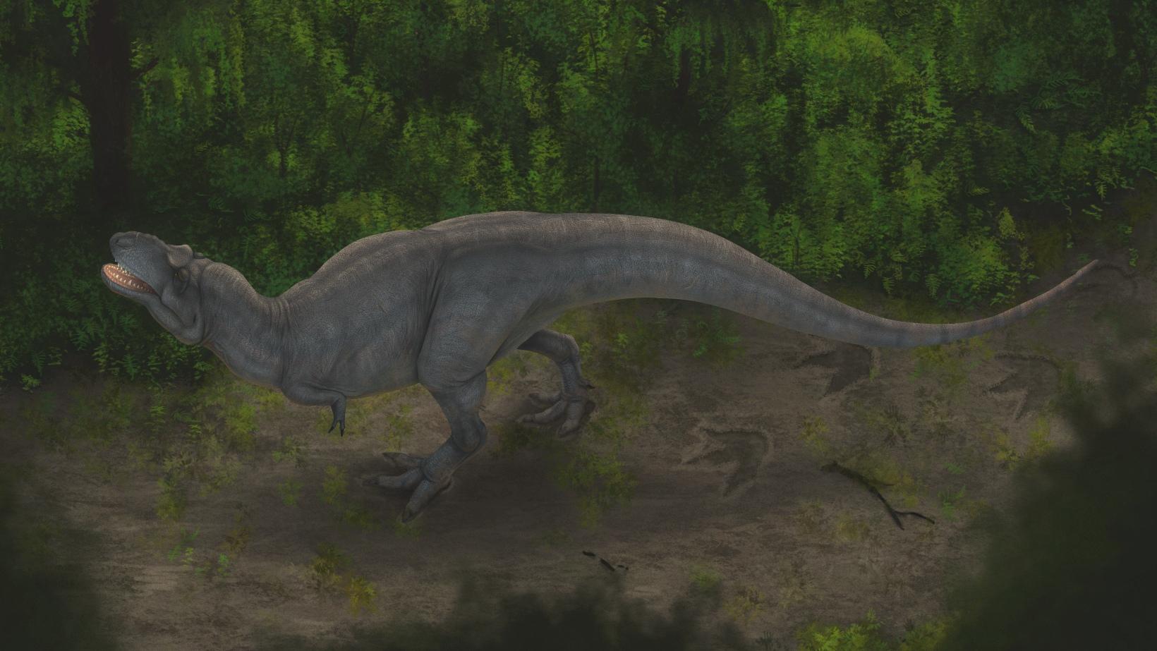 210421-tyrannosaur-footprints-image1-main.jpg