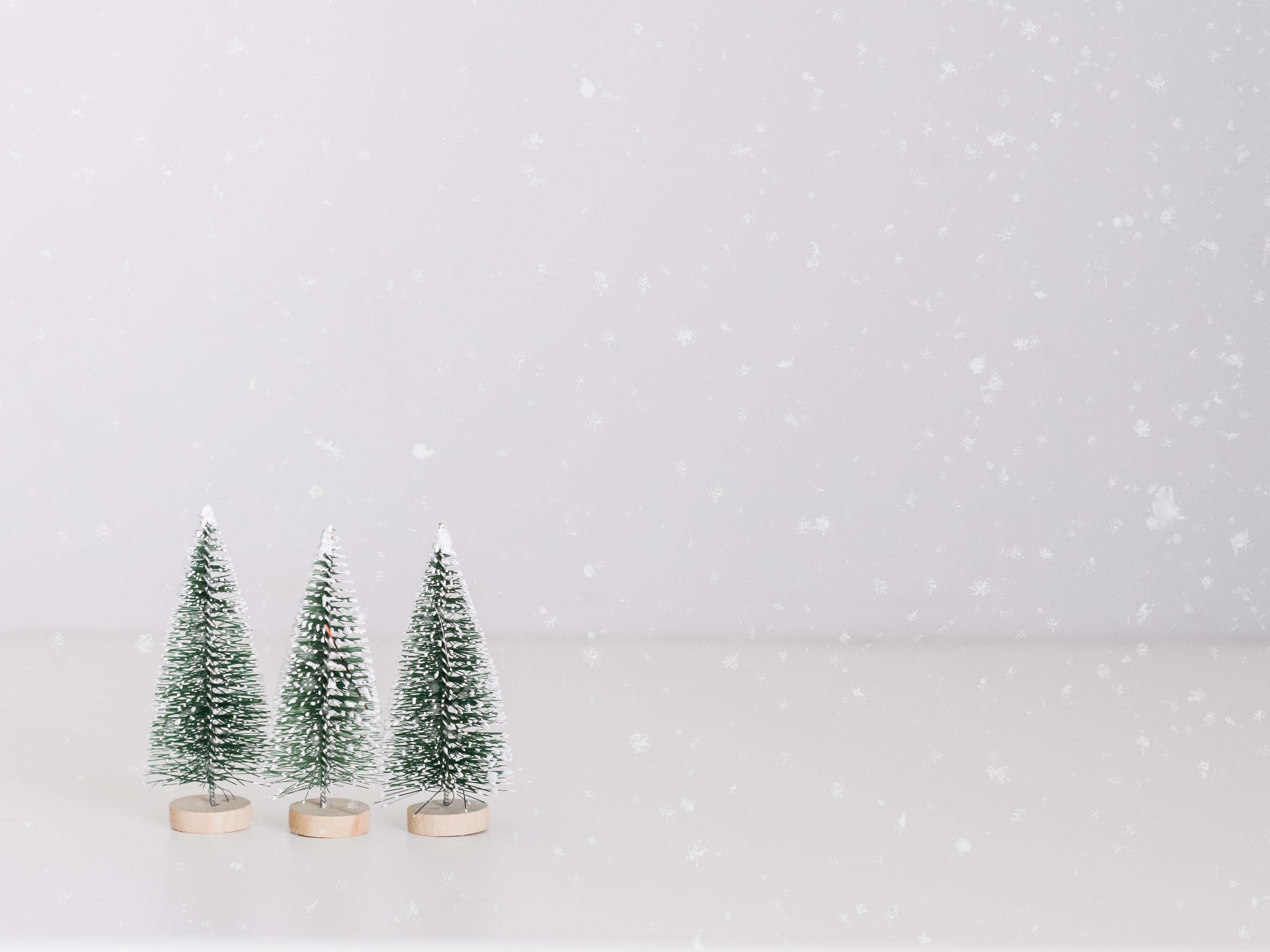 tiny small fake fir trees