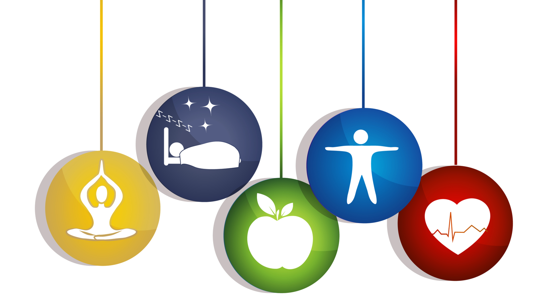healthy body components in ornaments
