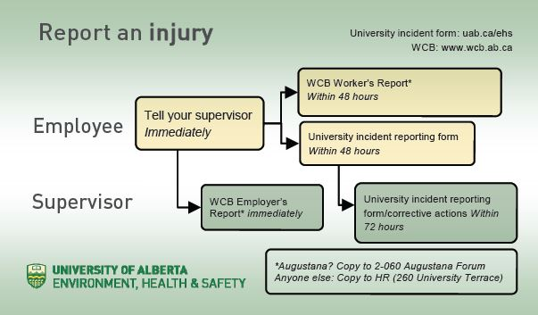 Report An Incident  Environment Health Safety