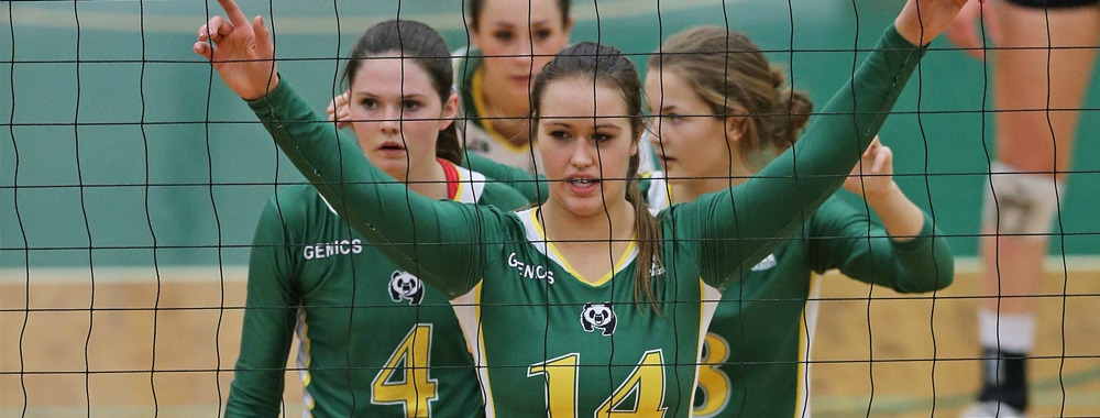 pandas volleyball