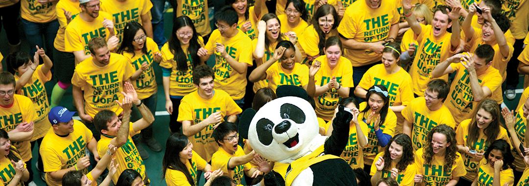panda dodgeball