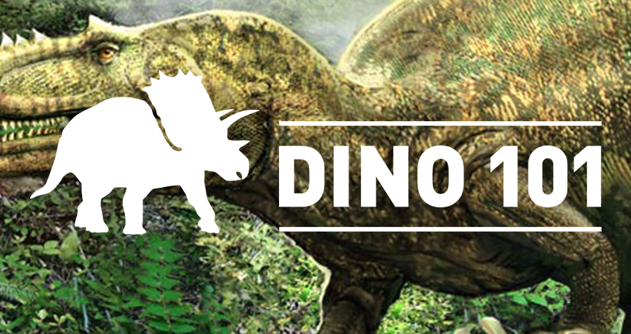A silhouette of a triceratops next to the words Dino 101.
