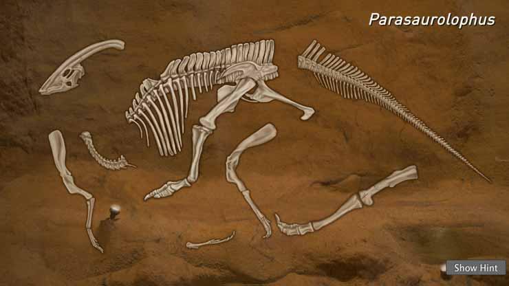 Parasaurolophus Puzzle