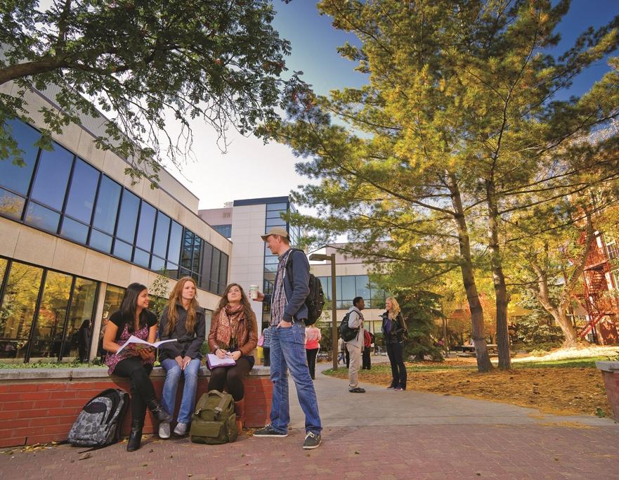 ualberta students union fall