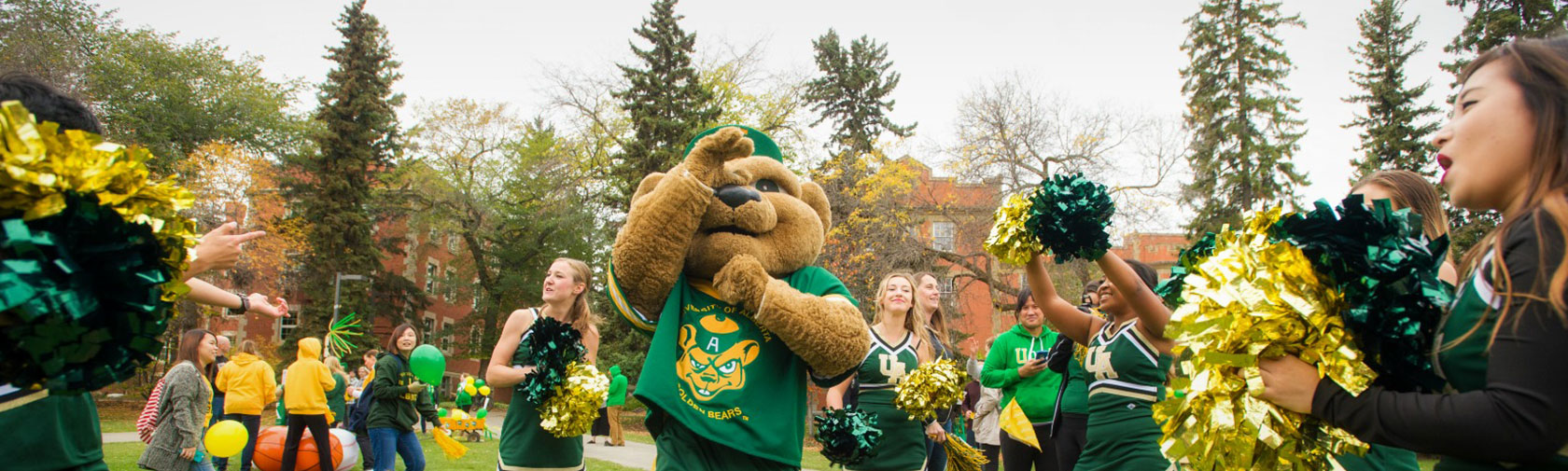 Get Your Green and Gold On