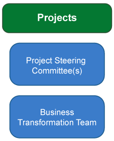 Projects - Project Steering Committee(s), Project Management Office