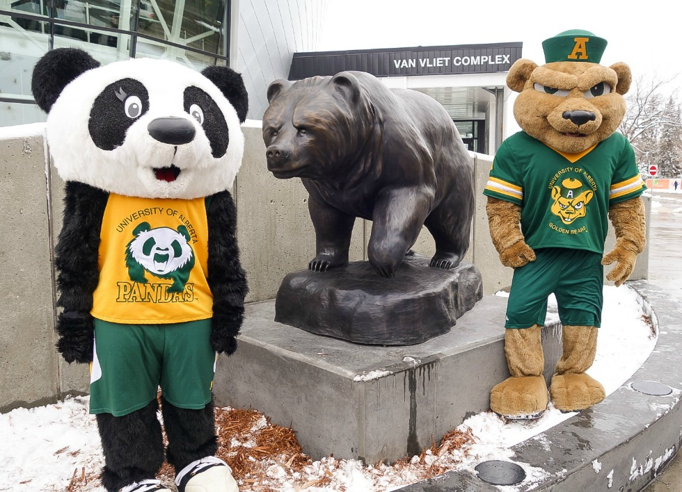 Welcoming the newest bear on campus: GUBA and Patches with the Alberta Bear unveiled March 20, 2015 during the grand opening of the PAW Centre