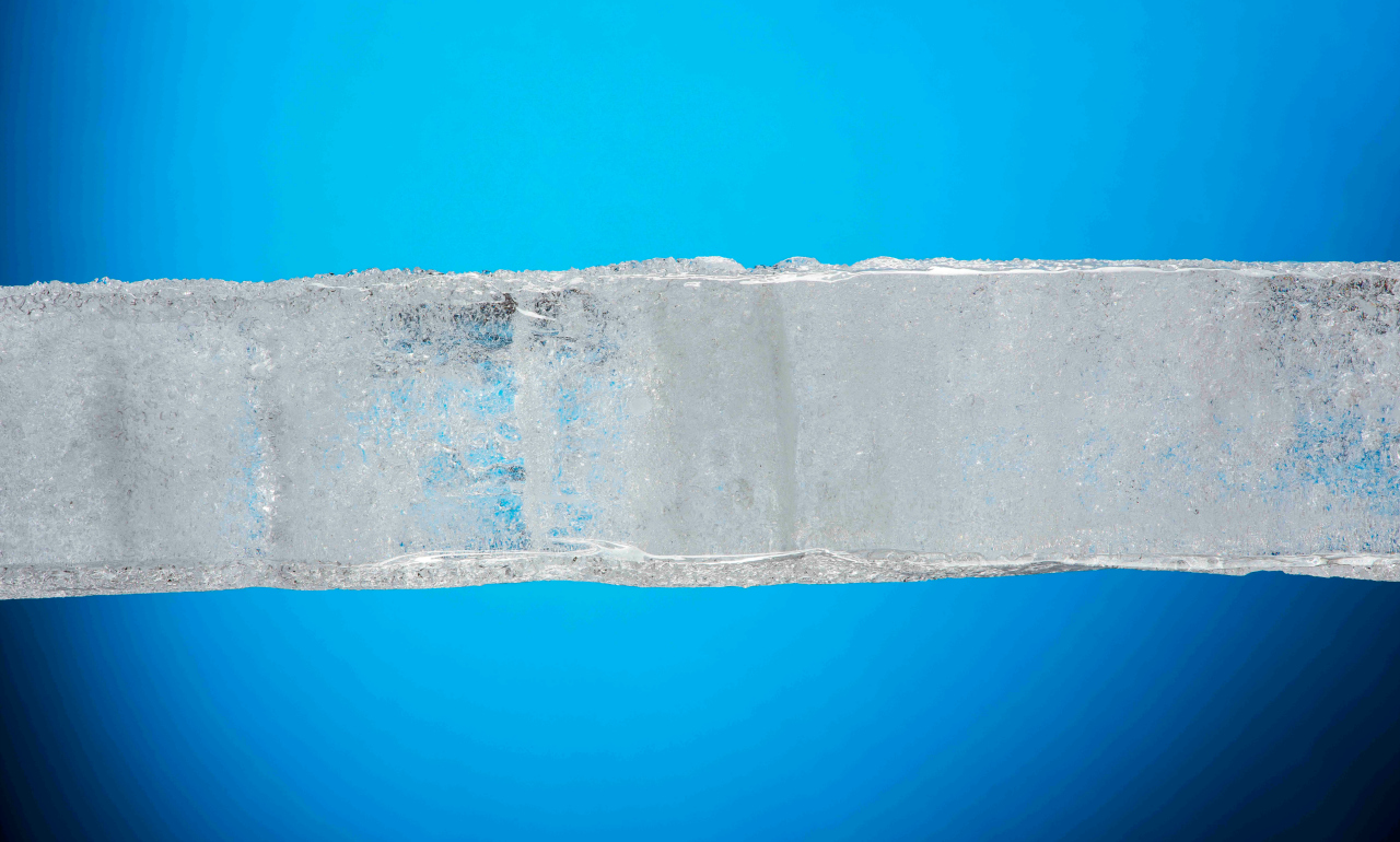 An ice core sample