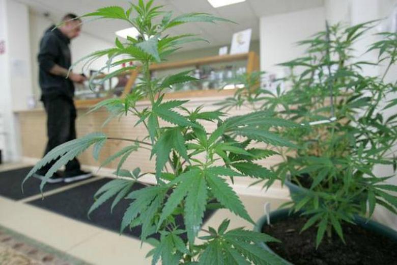A customer picks up cannabis at a dispensary.