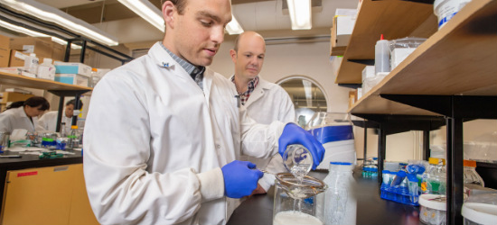 (From left) Researchers Ben Bourrie and Ben Willing developed a healthier recipe for kefir based on their research showing that traditional varieties of the fermented milk beverage had more health benefits than a store-bought brand available in North America. (Photo: Richard Siemens)