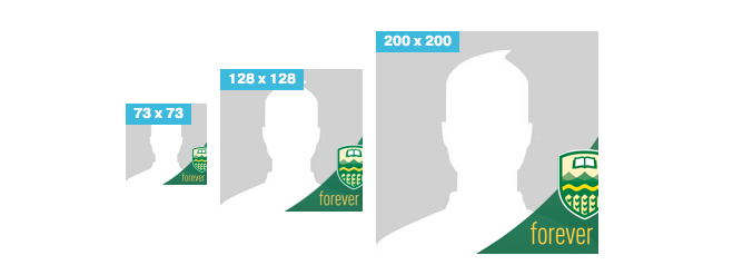 Forever Green and Gold Twibbon in three sizes
