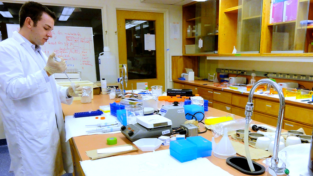 A researcher work in a lab