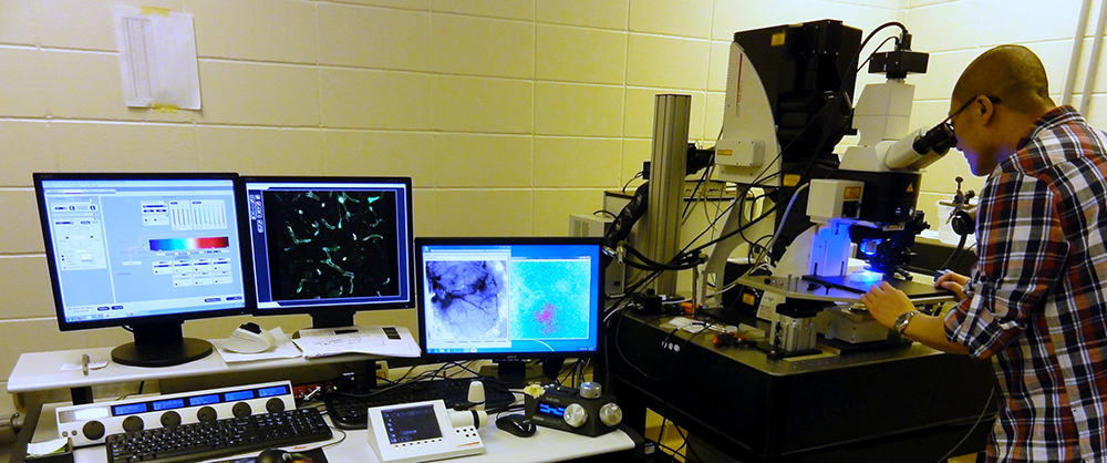 A researcher examines tissues beneath a microscope.