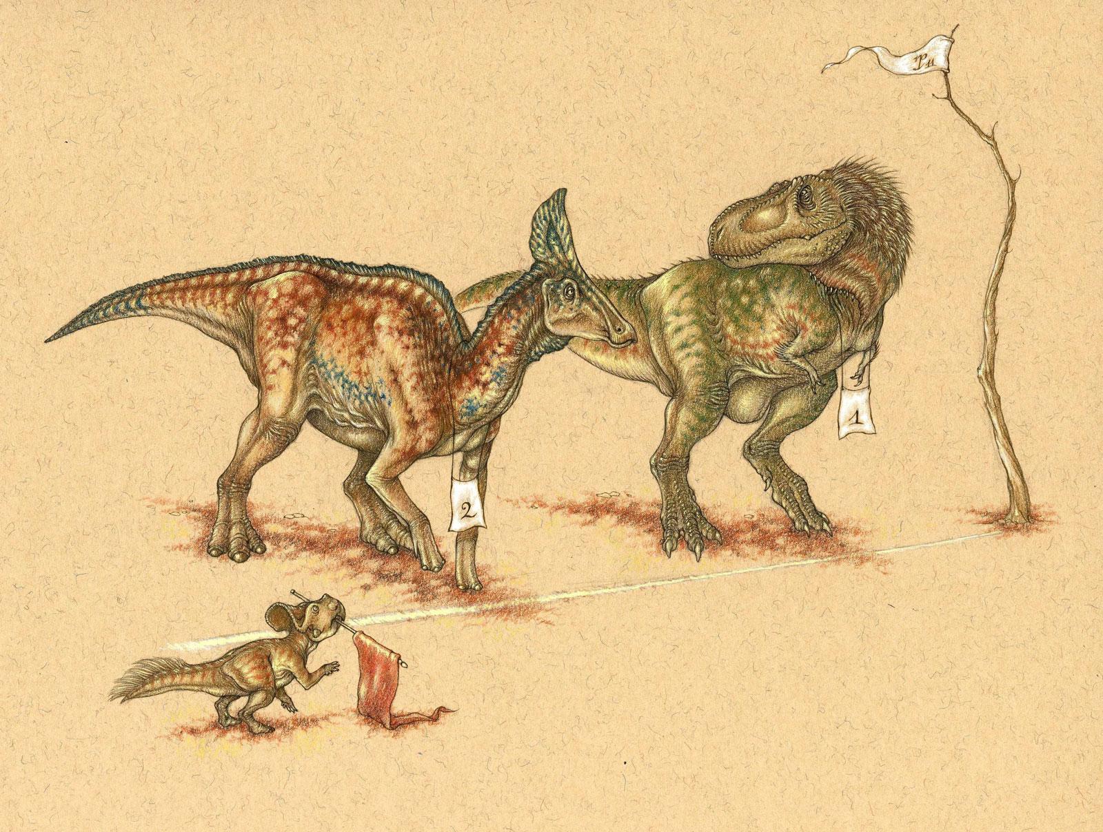 Dinosaur race – Tyrannosaurus Rex and Albertosaurus at the start line