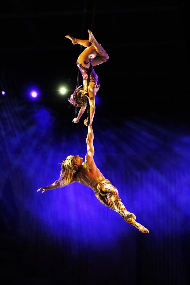 Cirque du Soleil Allavita Duo