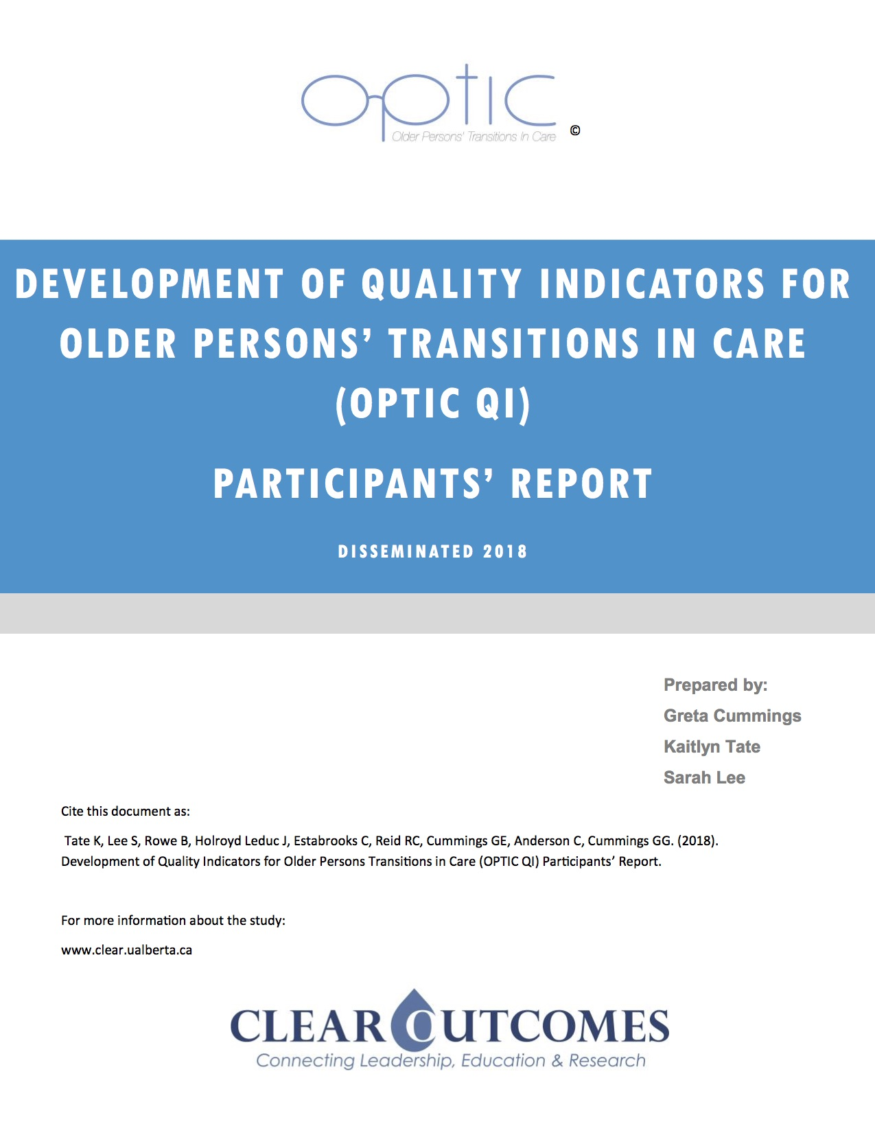 OPTIC QI final report