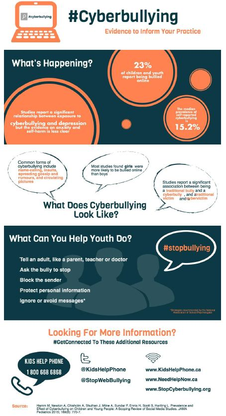 Cyberbullying Infographic - Professional Audience