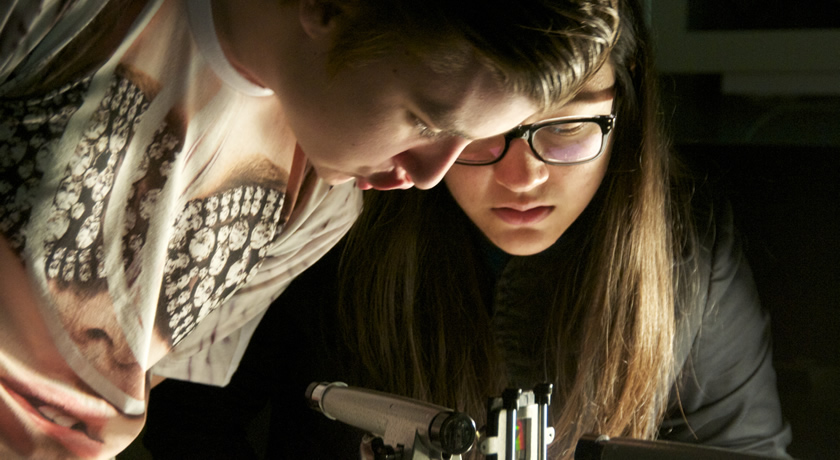 Physics Undergraduate Laboratories