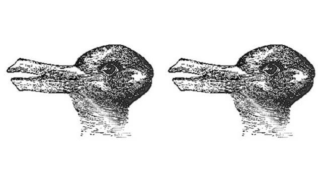 Duck - Rabbit
