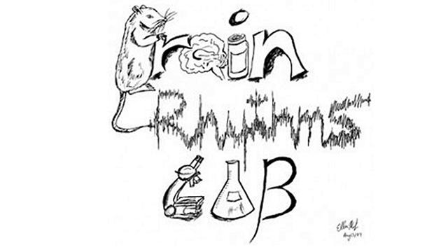 Brain Rhythms Lab