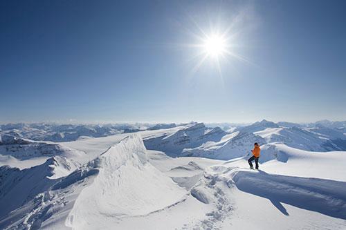 Thinking Mountains