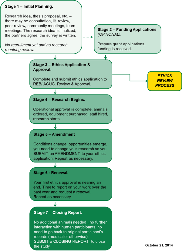 Flowchart outlining the stages of a research project.