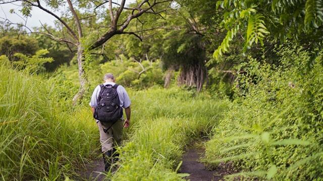 Arturo Sanchez-Azofeifa, UAlberta professor and principal scientist of the Santa Rosa National Park environmental monitoring supersite in Costa Rica, walks in the tropical dry forest near the site.