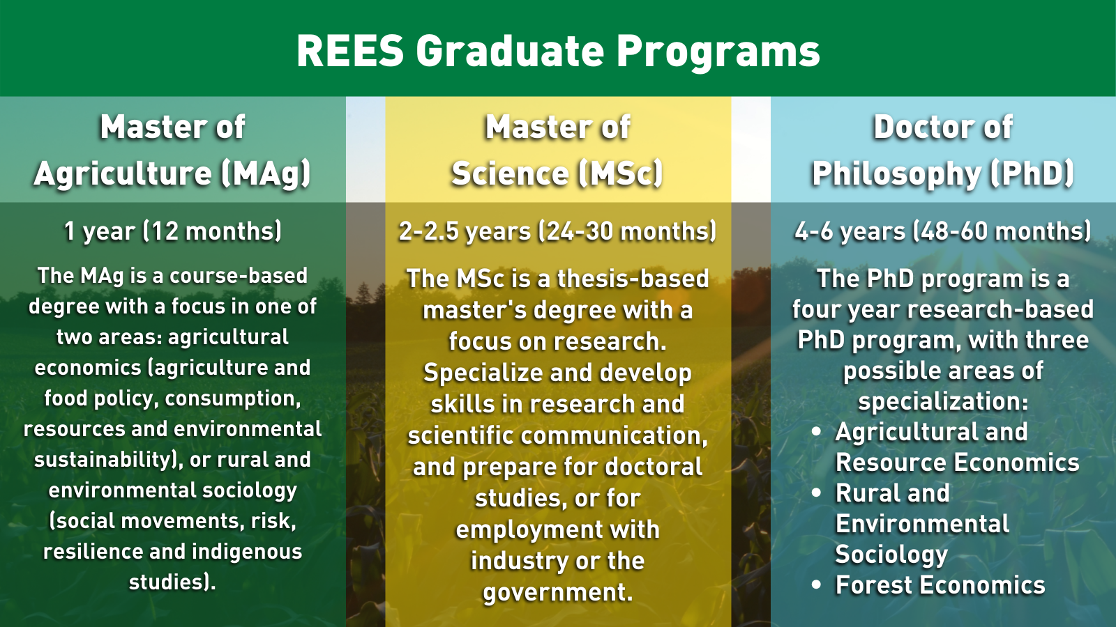rees-graduate-programs-2020-banner-v3-2.png