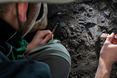 A closeup over the shoulder of a student digging up dinosaur fossils in the Danek bone bed in Alberta.
