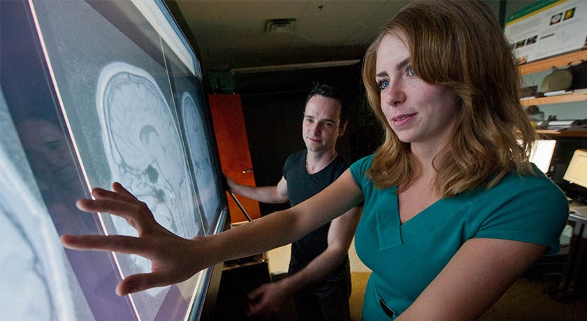Two undergraduate students review interactive scans of the human brain.