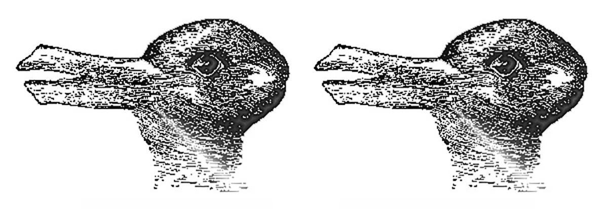 Optical illusion that can appear as a duck or a rabbit depending on how one looks at it.