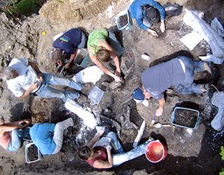 Paleontology Dig