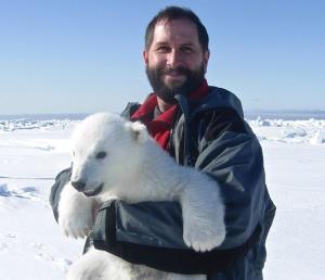 Polar bear researcher Andrew Derocher with a cub