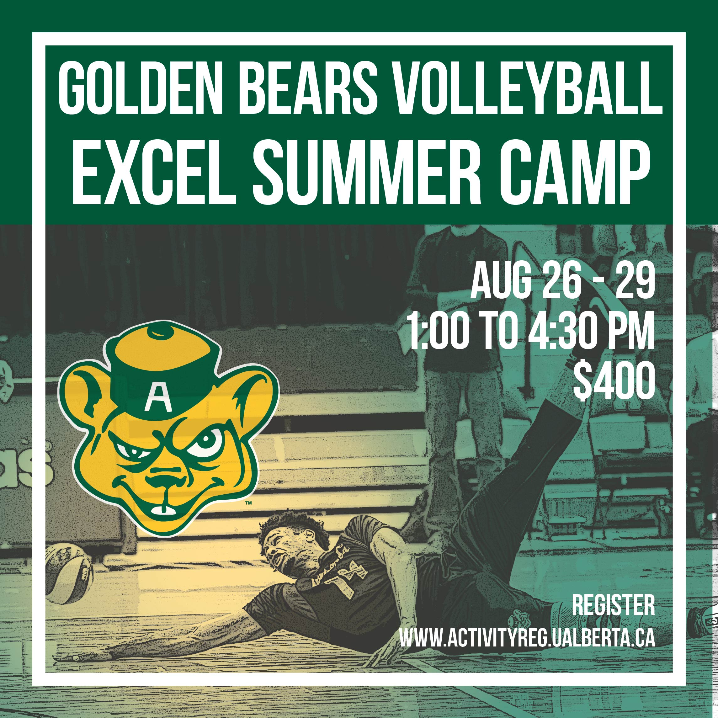 Excel Camp Green And Gold Sport System